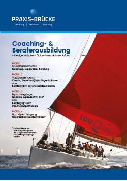 Praxis-Brücke Broschüre Titel